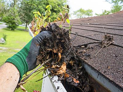 Dachrinnenreinigung, Zaspel-Dach - Servicearbeiten
