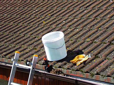 Dachwartung, Zaspel-Dach - Servicearbeiten